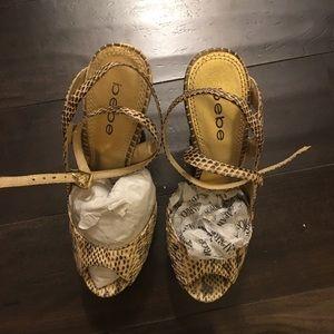 Bebe Shoe